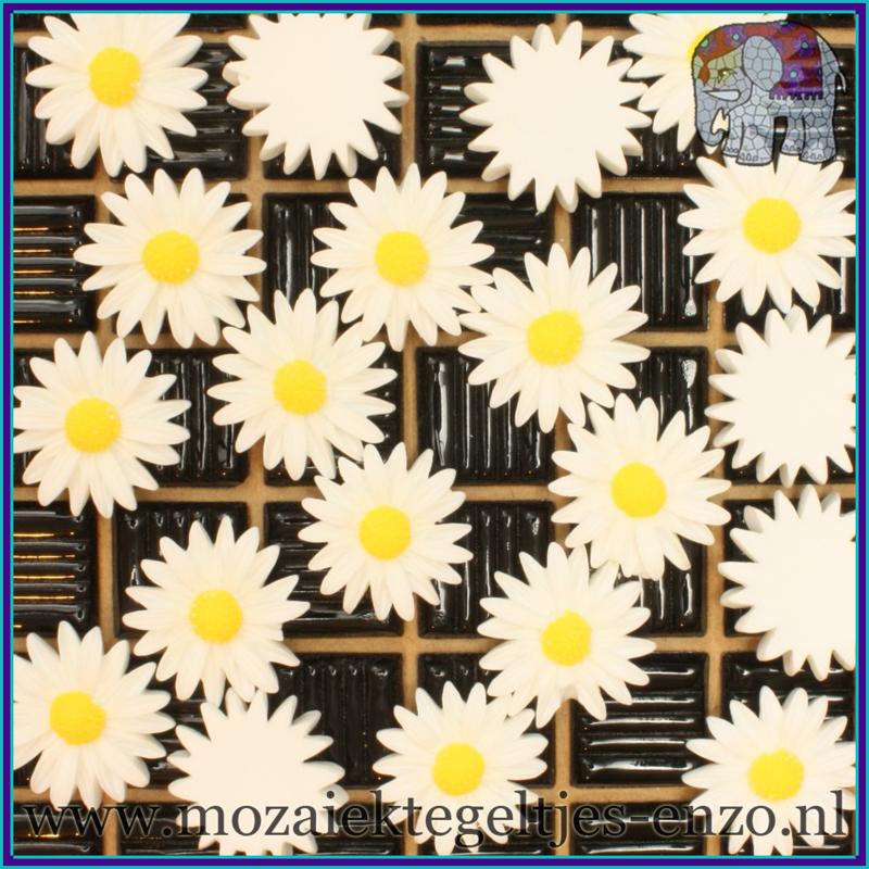 Cabochon hars plaksteen - Platte onderkant - Unlimited edition - per 1 stuk - Margriet (4)