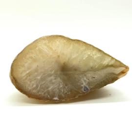 Agaat 1 zijde gepolijst, 244 gram