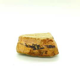 Versteend hout met kristallen, 56 gram