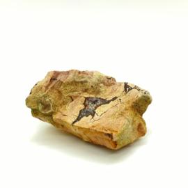 Versteend hout met kristallen, 104 gram