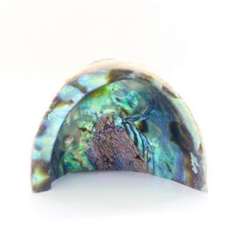 Abalone / Paua schelp, staand model