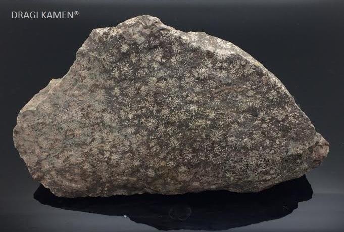 Sterren Jaspis ruw stuk, 629 gram.