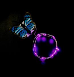 Haarlichtjes Butterfly | Pink