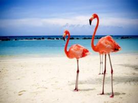 Diamond Painting set | Flamingo's @ the Beach