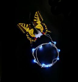 Haarlichtjes Butterfly | Cool White