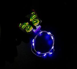 Haarlichtjes Butterfly | Purple