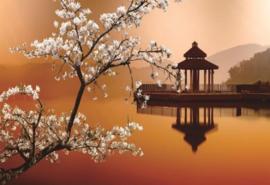 Diamond Painting set | Cherry Blossom Lake