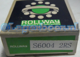 6004-2RS in RVS SS6004-2RS W6004-2RS Rollway