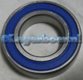 6006-2RS IBU in RVS SS6006-2RS W6006-2RS