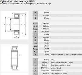 N315-ECM/C3 SKF