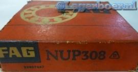 NUP308 FAG