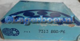 7313-BGO/P6 Steyr