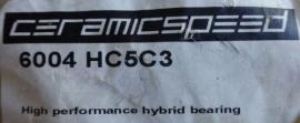 6004-2RSHC5/C3 SKF keramisch lager