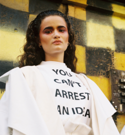 you can't arrest an idea - one size fits all oversized tee