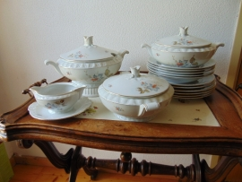 Antique Czech dinner service