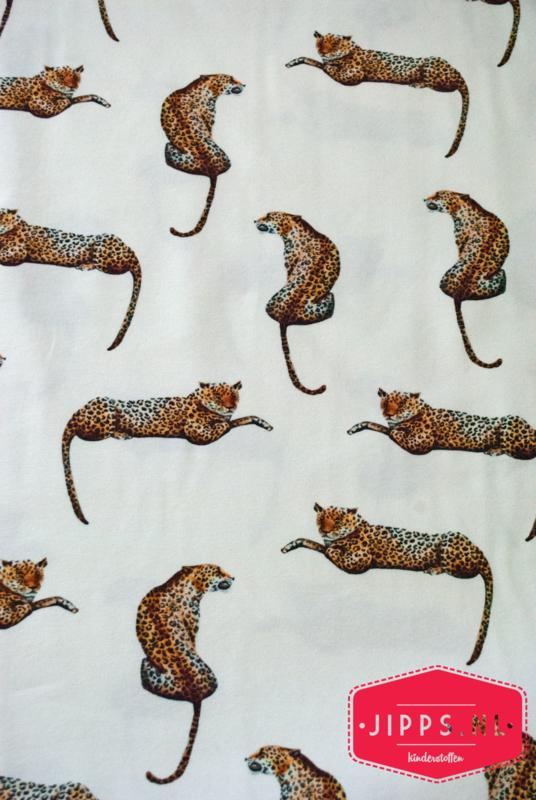 Leopard - Qjutie Kids - tricot