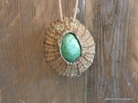 Schelp keramiek groen
