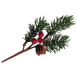 PINE BRANCH WITH BERRIES & PINE CONE