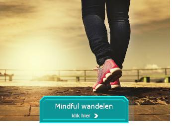 Mindful wandelen Vianen