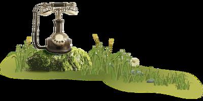 Maak een afspraak met Botanisch in Balans holistische praktijk Vianen