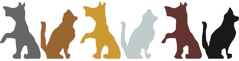 Voedingsadvies voor de hond BARF KVV Koken TCM Vijf Elementen