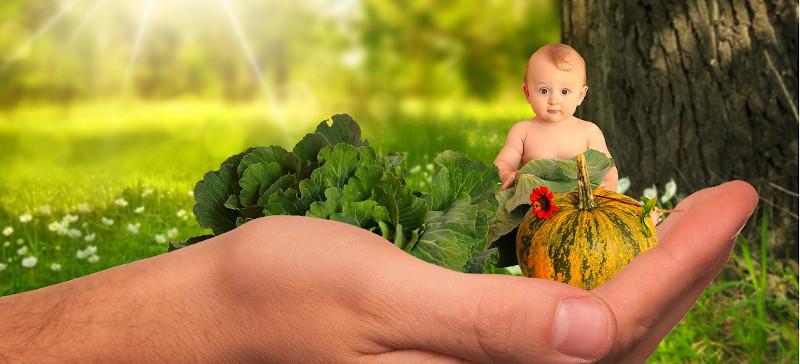 Voedingsadvies voor kinderen bij Botanisch in Balans Vianen