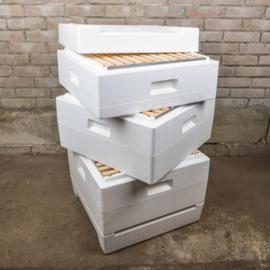 Segeberger pakket D: gemodificeerd gevorderden plus