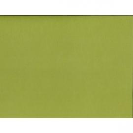 Leaf Green Adhesvie Cardstock