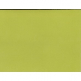 Key Lime Adhesive Cardstock