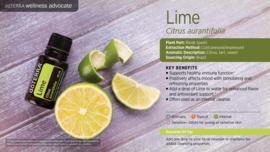 Lime (Limoen) - 15ml