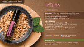 InTune - Focus Blend- 10 ml - Roller