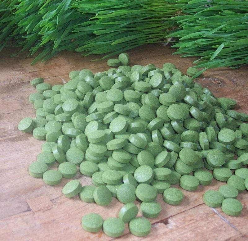 ZEN-Tarwegras - 5 grote potten (65 euro per stuk) met ieder 600 tabletten - 3000 tabletten - kuur voor 10 maanden