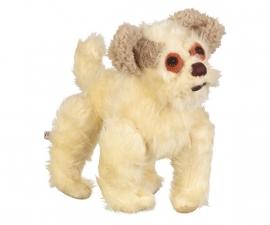 knuffel op maat : Een hondenportret
