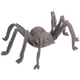 spin met echt spinnenweb