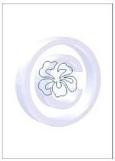 bloem 005