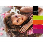 the pover of love collection 4*15ml
