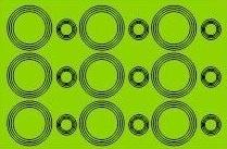 036 lime