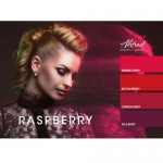Raspberry collectie