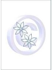 bloem 007