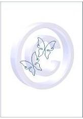 vlinder 005