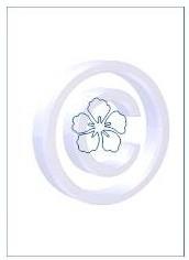 bloem 002
