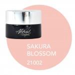 Sakura Blossom  pre order verkrijgbaar vanaf 5/3/2021