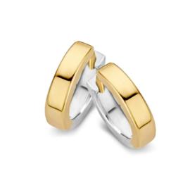 Gouden bicolor creolen
