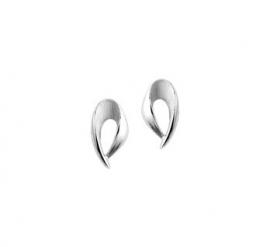 Zilveren oorknoppen (set 5)