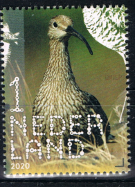 NEDERLAND VOGELS BIRDS 4/10 ++ D(B) 183