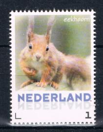 NEDERLAND 2013 NVPH VEL EEKHOORN SQUARREL ++ L 498