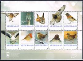 NEDERLANDS VOGELSE BIRDS  ++ M2-15