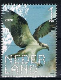 NEDERLAND VOGELS BIRDS 3/10 ++ D(B) 182