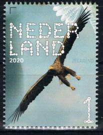 NEDERLAND VOGELS BIRDS 10/10 ++ D(B) 182