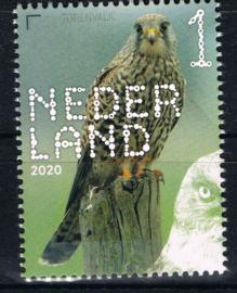 NEDERLAND VOGELS BIRDS 6/10 ++ D(B) 182